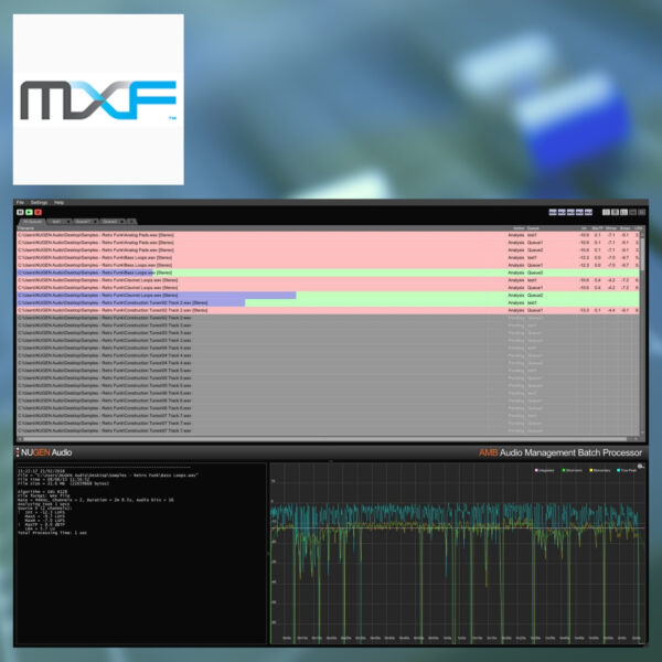 NUGEN Audio - AMB MXF